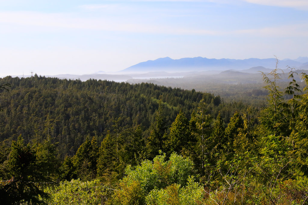 Radar Hill and Kap'Yong Memorial   Tofino Trails